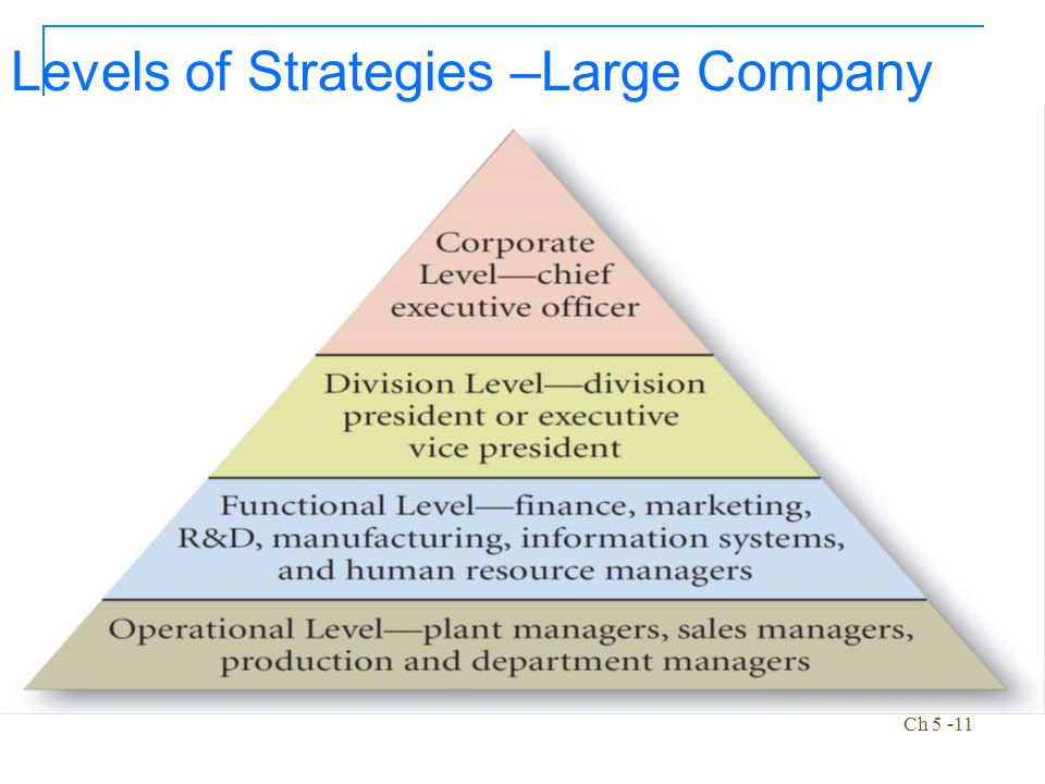 Ch 5 -11 Levels of Strategies –Large Company