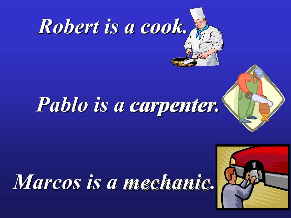 cook cook carpenter carpenter mechanic mechanic Robert is a cook.