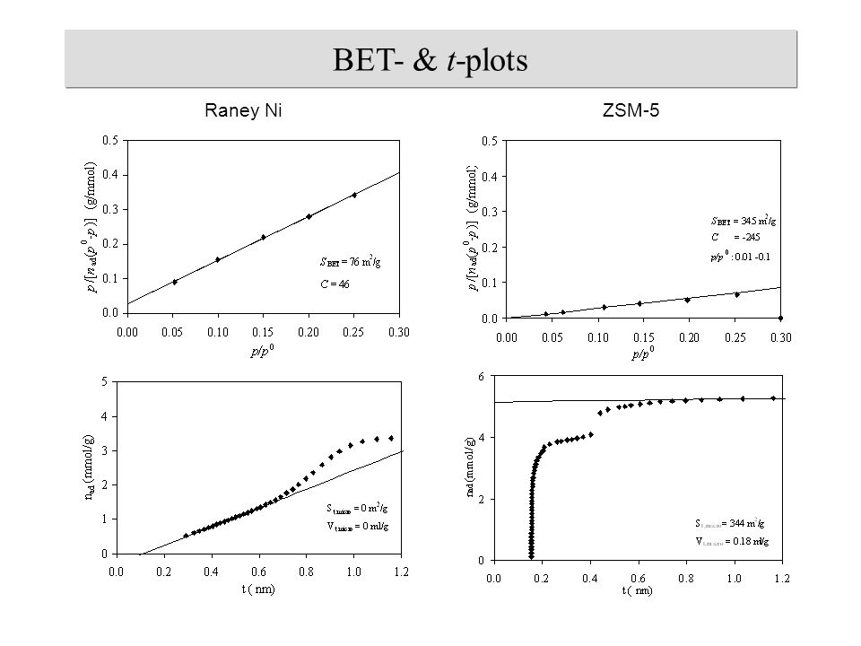 Raney NiZSM-5 BET- & t-plots