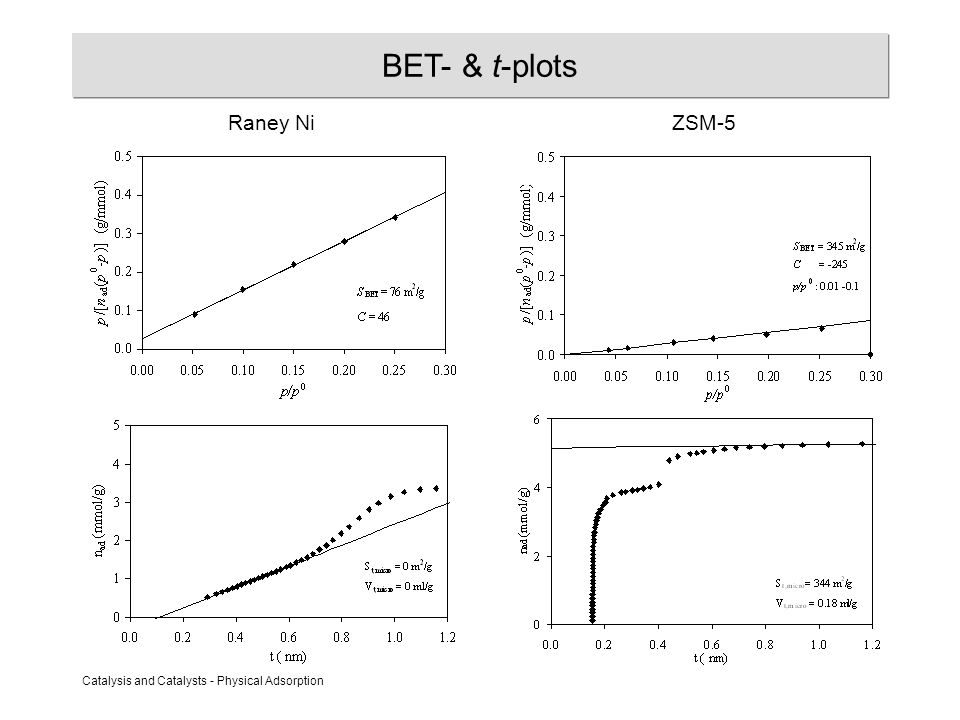 Catalysis and Catalysts - Physical Adsorption BET- & t-plots Raney NiZSM-5