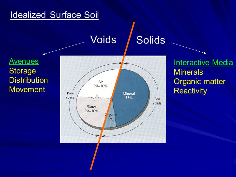 Solids Voids Avenues Storage Distribution Movement Interactive Media Minerals Organic matter Reactivity Idealized Surface Soil
