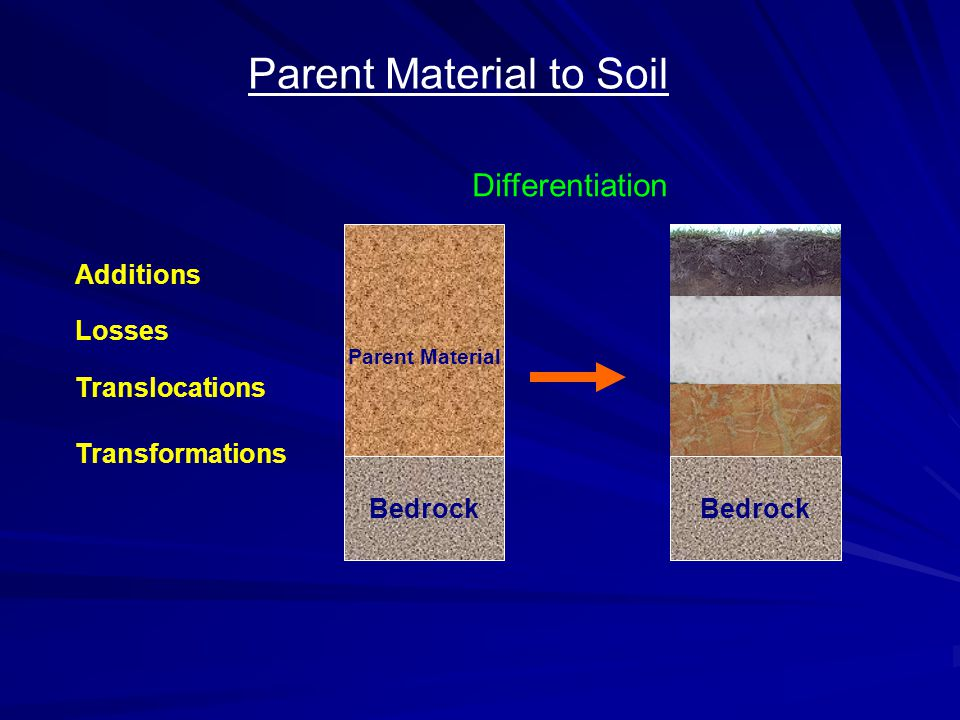 Parent Material to Soil Parent Material Bedrock Additions Losses Translocations Transformations Bedrock Differentiation