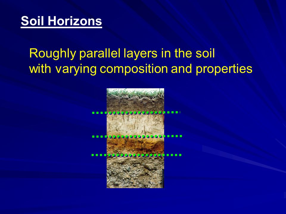 Soil Horizons Roughly parallel layers in the soil with varying composition and properties