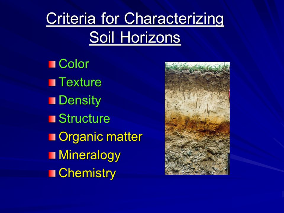 Criteria for Characterizing Soil Horizons ColorTextureDensityStructure Organic matter MineralogyChemistry