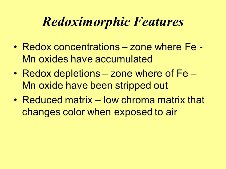 Redoximorphic Features Redox concentrations – zone where Fe - Mn oxides have accumulated Redox depletions – zone where of Fe – Mn oxide have been stri