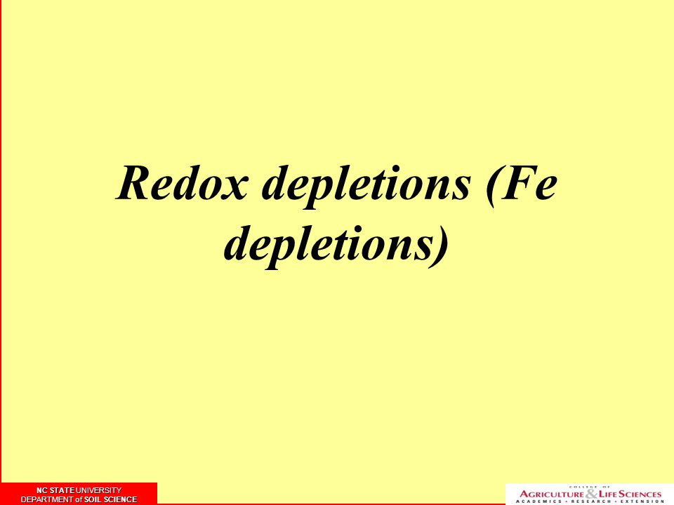 Redox depletions (Fe depletions) NC STATE UNIVERSITY DEPARTMENT of SOIL SCIENCE NC STATE UNIVERSITY DEPARTMENT of SOIL SCIENCE NC STATE UNIVERSITY DEP