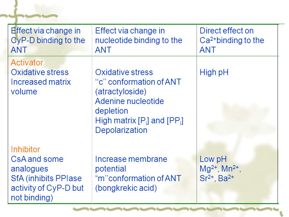 Effect via change in CyP-D binding to the ANT Effect via change in nucleotide binding to the ANT Direct effect on Ca 2+ binding to the ANT Activator Oxidative stress Increased matrix volume Inhibitor CsA and some analogues SfA (inhibits PPIase activity of CyP-D but not binding) Oxidative stress ''c'' conformation of ANT (atractyloside) Adenine nucleotide depletion High matrix [P i ] and [PP i ] Depolarization Increase membrane potential m''conformation of ANT (bongkrekic acid) High pH Low pH Mg 2+, Mn 2+, Sr 2+, Ba 2+