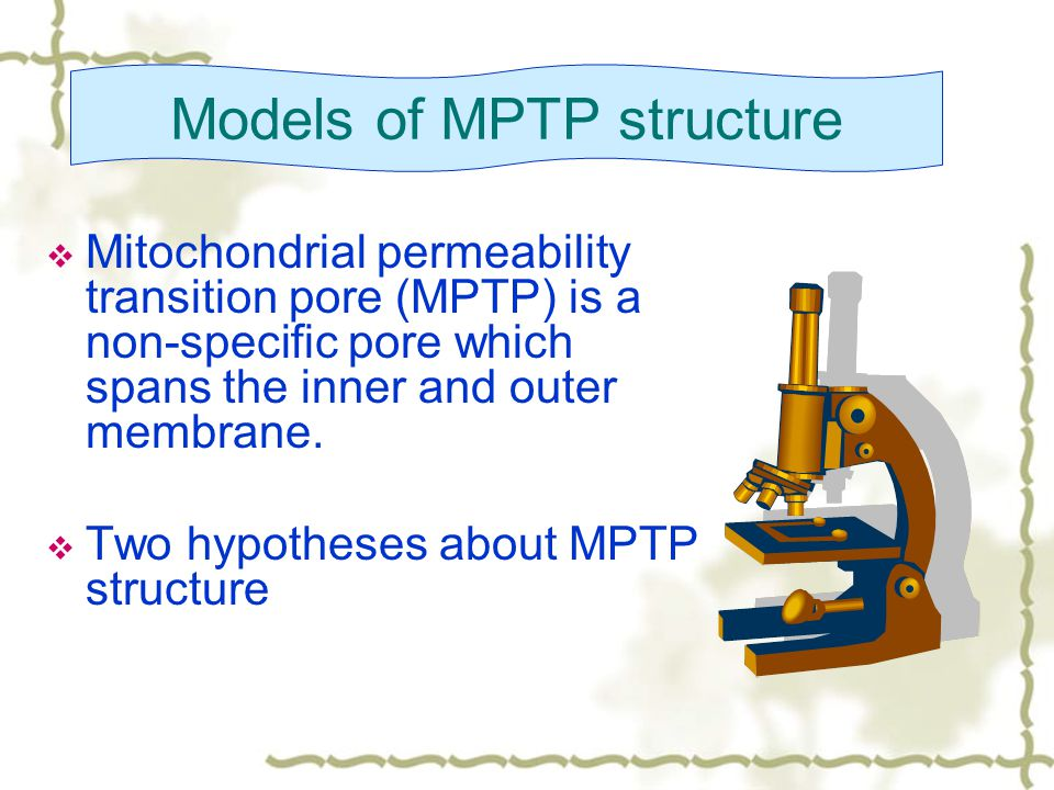  Mitochondrial permeability transition pore (MPTP) is a non-specific pore which spans the inner and outer membrane.