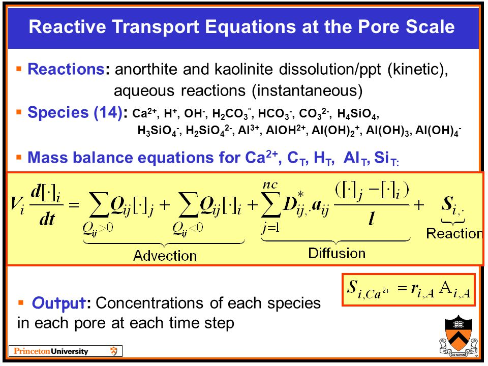 Reactive Transport Equations at the Pore Scale  Reactions: anorthite and kaolinite dissolution/ppt (kinetic), aqueous reactions (instantaneous)  Species (14): Ca 2+, H +, OH -, H 2 CO 3 *, HCO 3 -, CO 3 2-, H 4 SiO 4, H 3 SiO 4 -, H 2 SiO 4 2-, Al 3+, AlOH 2+, Al(OH) 2 +, Al(OH) 3, Al(OH) 4 -  Mass balance equations for Ca 2+, C T, H T, Al T, Si T:  Output : Concentrations of each species in each pore at each time step