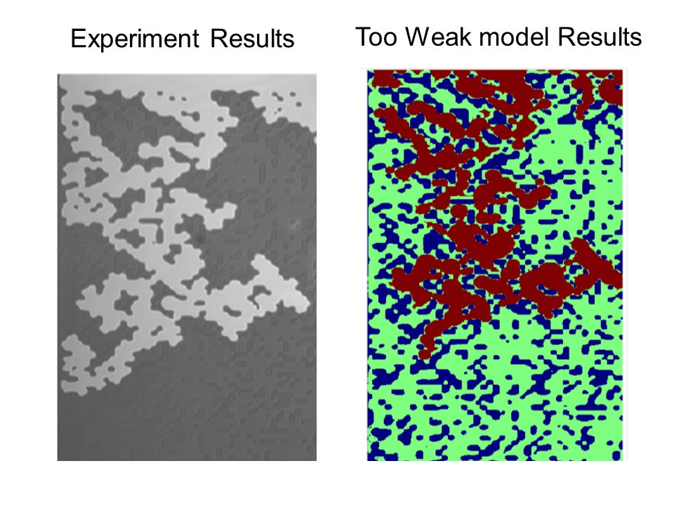 Experiment Results Too Weak model Results