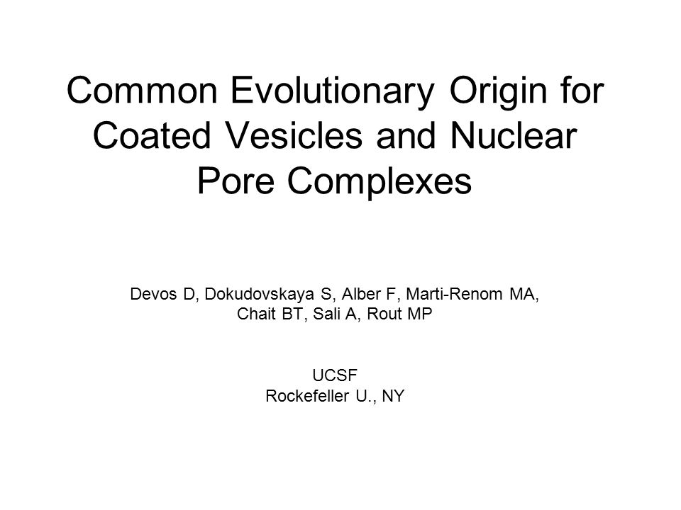 Common Evolutionary Origin for Coated Vesicles and Nuclear Pore Complexes Devos D, Dokudovskaya S, Alber F, Marti-Renom MA, Chait BT, Sali A, Rout MP UCSF Rockefeller U., NY