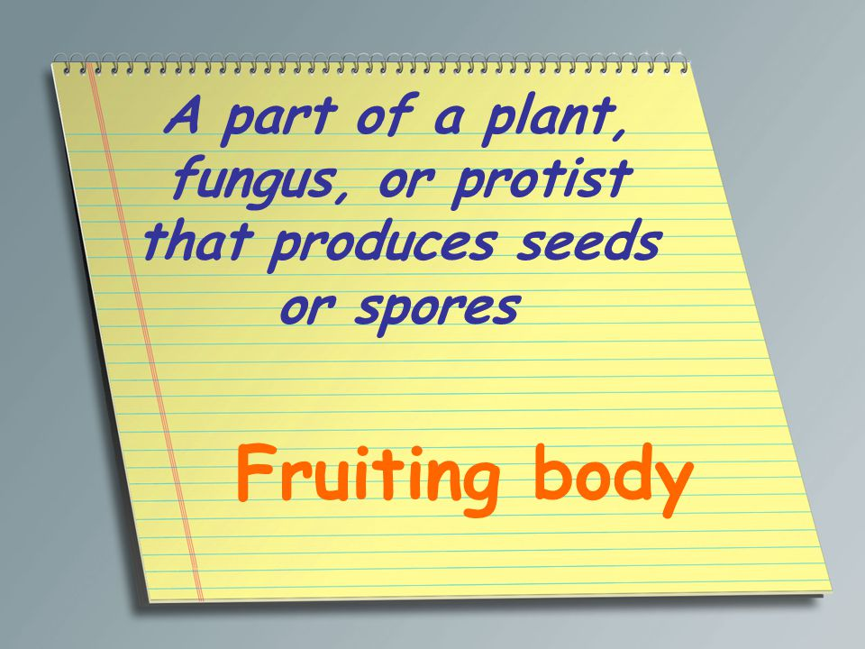 A part of a plant, fungus, or protist that produces seeds or spores Fruiting body