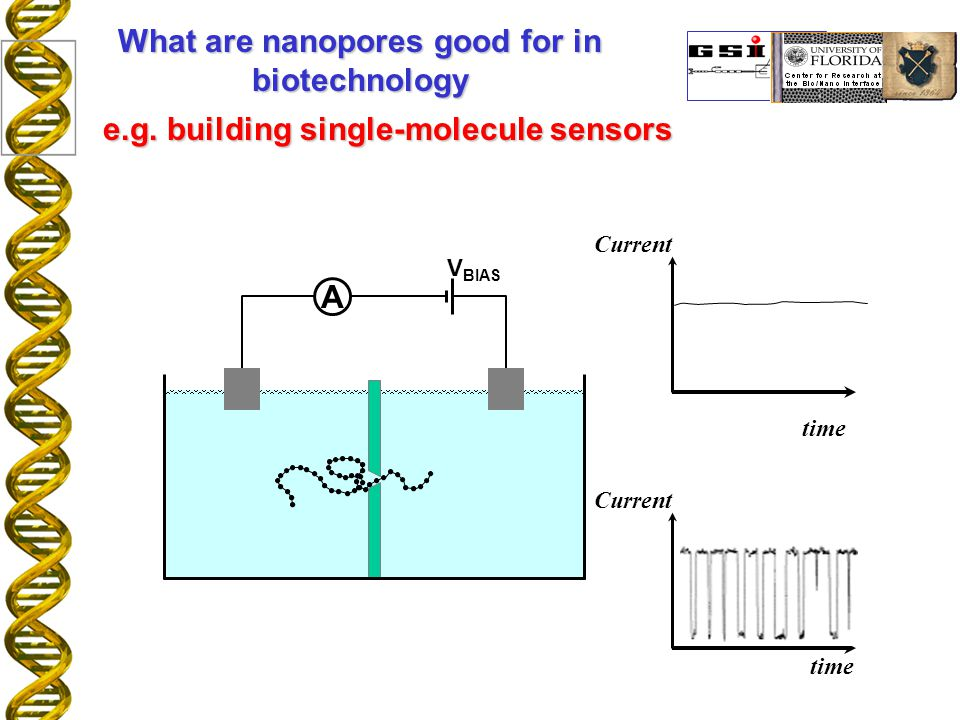 A V BIAS time Current time Current What are nanopores good for in biotechnology e.g.