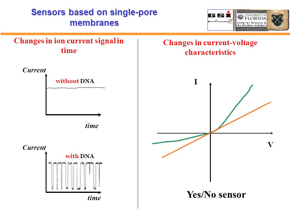 time Current time Current without DNA with DNA Changes in ion current signal in time Sensors based on single-pore membranes Changes in current-voltage characteristics V I Yes/No sensor