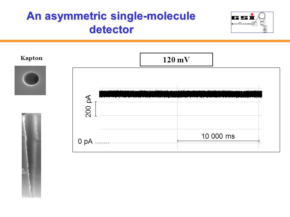 200 pA 0 pA 10 000 ms Kapton An asymmetric single-molecule detector 120 mV