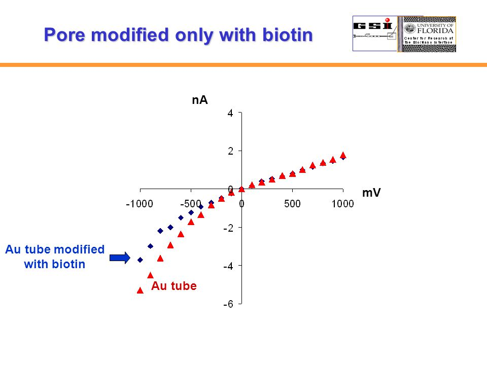 nA mV Au tube Au tube modified with biotin Pore modified only with biotin