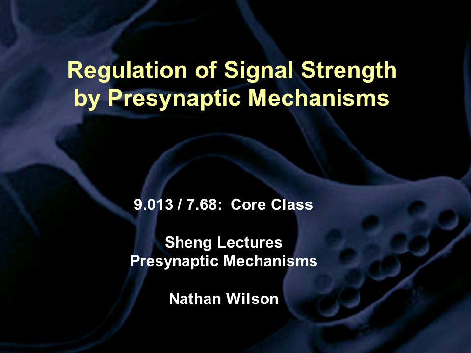 Regulation of Signal Strength by Presynaptic Mechanisms 9.013 / 7.68: Core Class Sheng Lectures Presynaptic Mechanisms Nathan Wilson