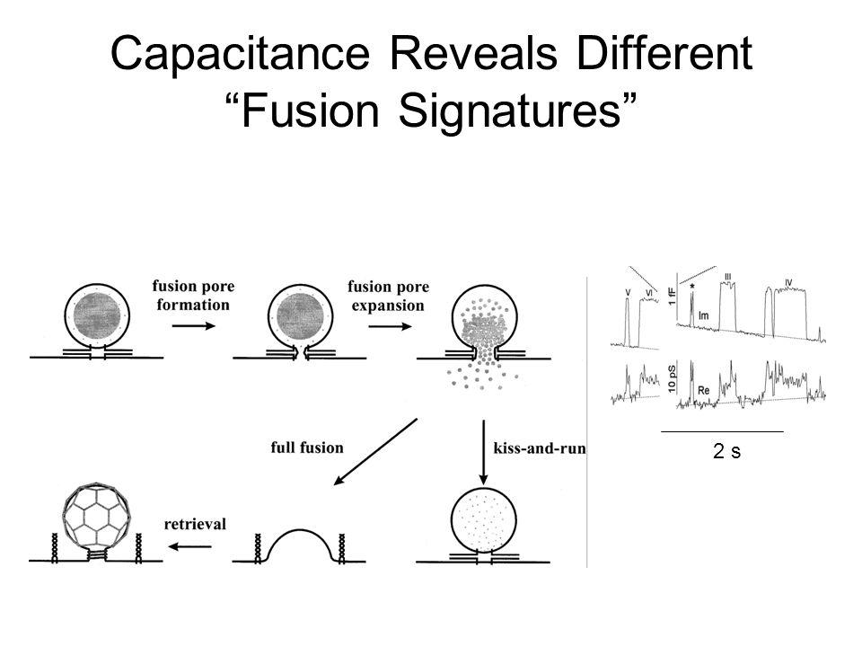 2 s Capacitance Reveals Different Fusion Signatures