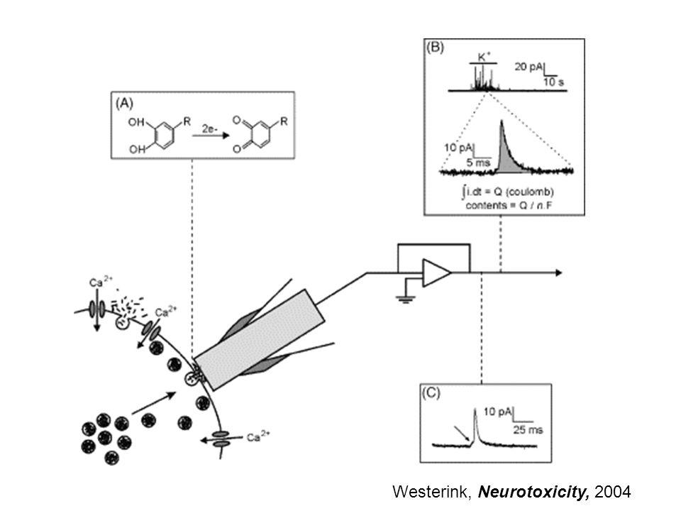 Westerink, Neurotoxicity, 2004