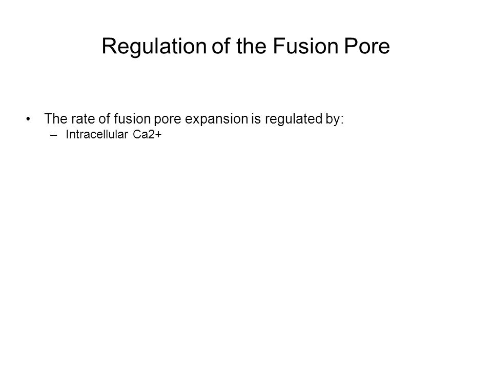 Regulation of the Fusion Pore The rate of fusion pore expansion is regulated by: –Intracellular Ca2+