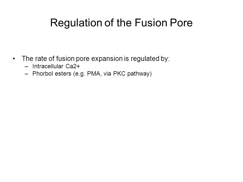 Regulation of the Fusion Pore The rate of fusion pore expansion is regulated by: –Intracellular Ca2+ –Phorbol esters (e.g.