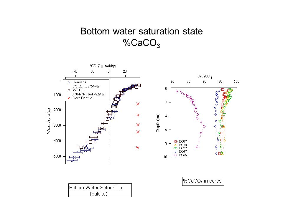 Bottom water saturation state %CaCO 3