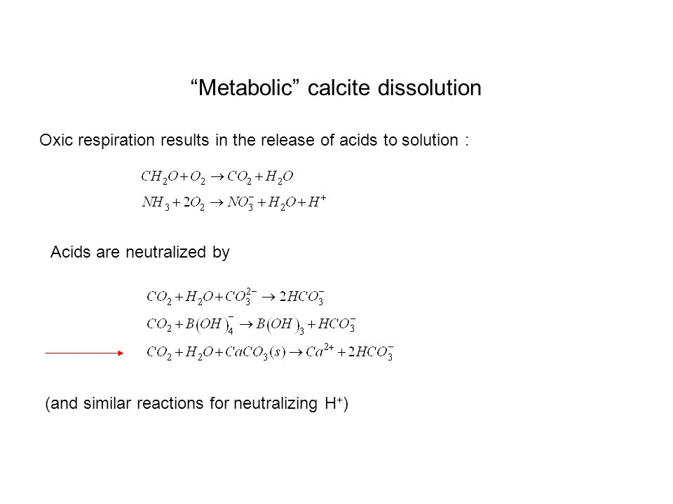 Metabolic calcite dissolution Oxic respiration results in the release of acids to solution : Acids are neutralized by (and similar reactions for neutralizing H + )