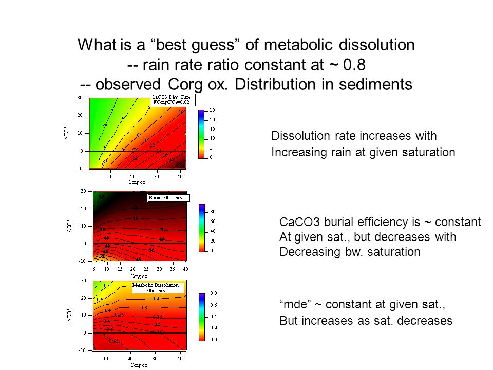 What is a best guess of metabolic dissolution -- rain rate ratio constant at ~ 0.8 -- observed Corg ox.