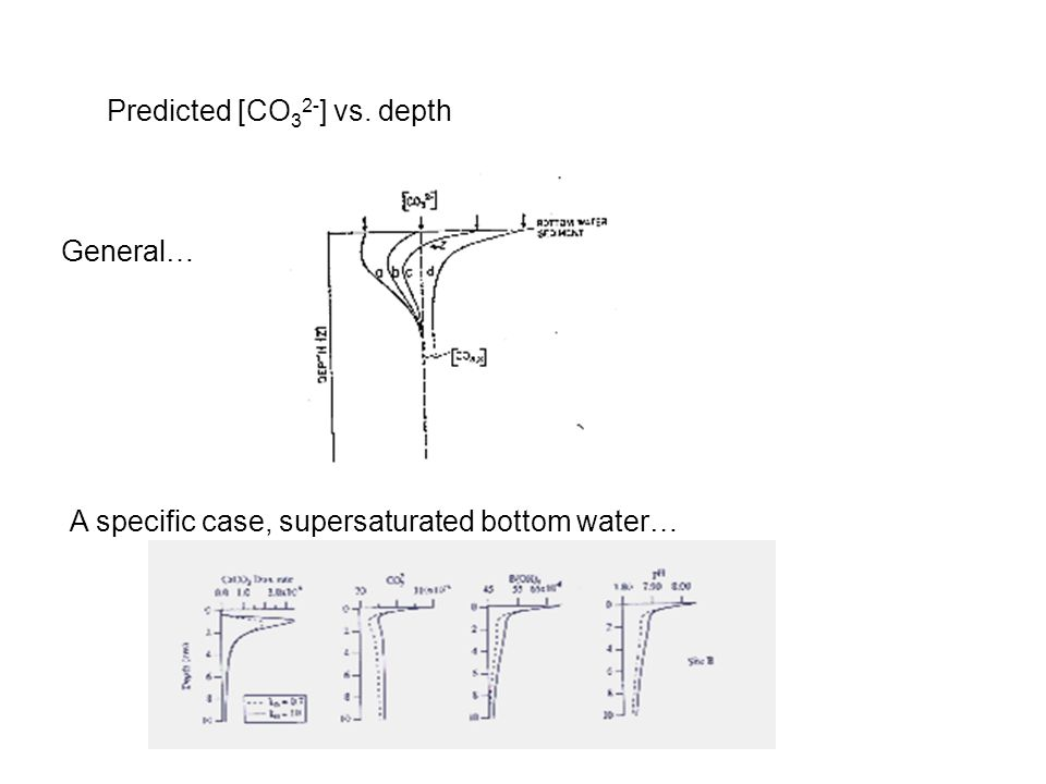 Predicted [CO 3 2- ] vs. depth General… A specific case, supersaturated bottom water…