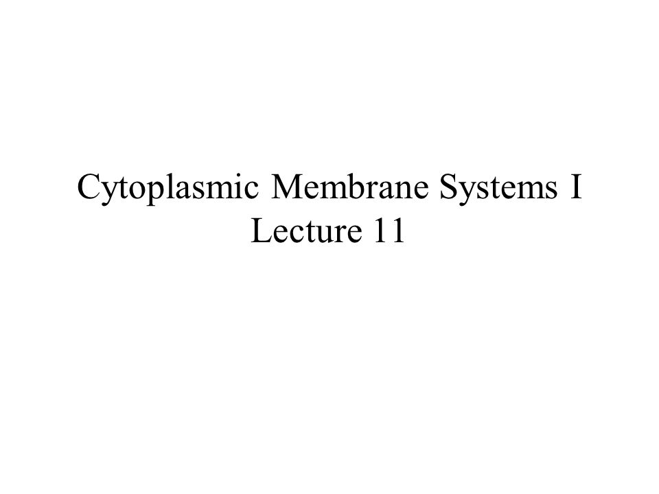 Cytoplasmic Membrane Systems I Lecture 11