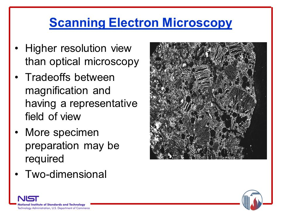 Scanning Electron Microscopy Higher resolution view than optical microscopy Tradeoffs between magnification and having a representative field of view More specimen preparation may be required Two-dimensional