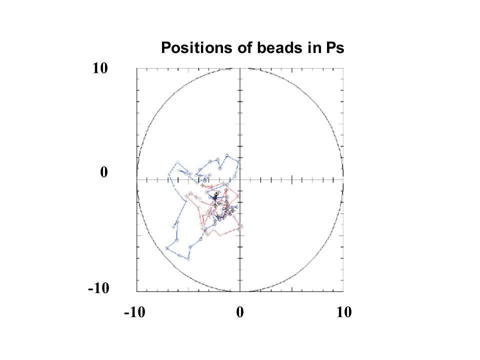 Positions of beads in Ps 10 0 -10 010