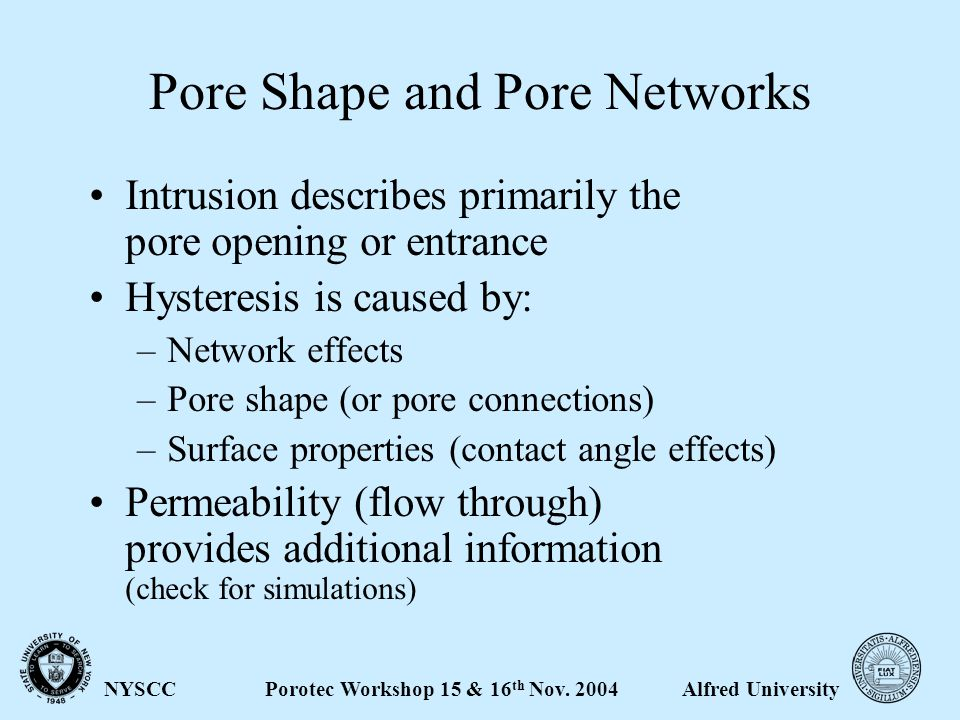 Alfred UniversityPorotec Workshop 15 & 16 th Nov. 2004NYSCC What Information do we get.