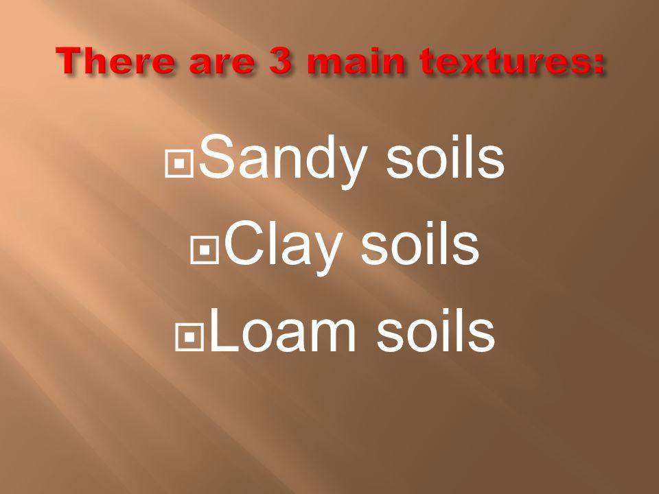  Sandy soils  Clay soils  Loam soils