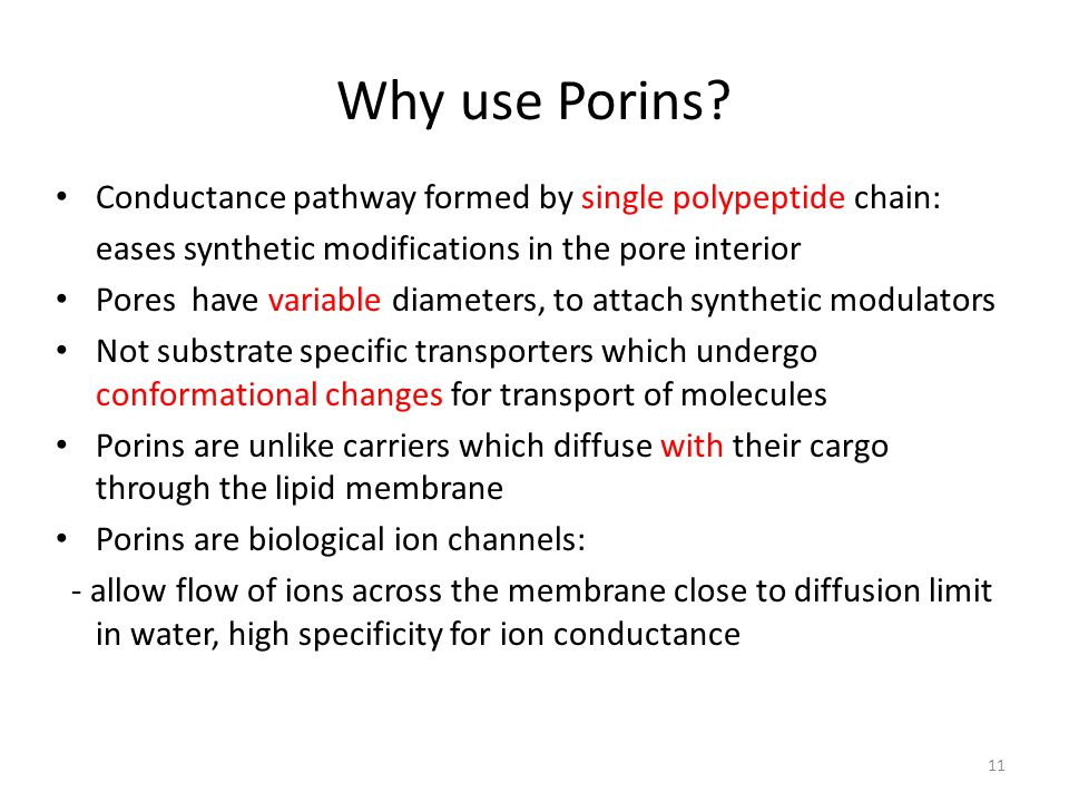Why use Porins? Conductance pathway formed by single polypeptide chain: eases synthetic modifications in the pore interior Pores have variable diamete