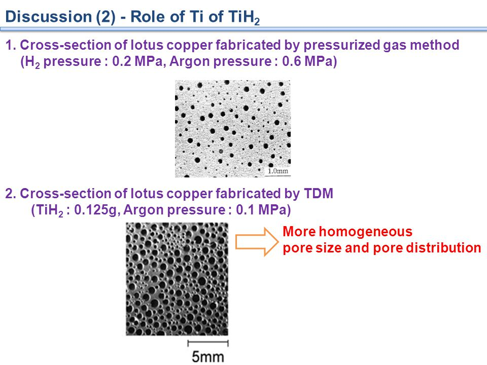 Discussion (2) - Role of Ti of TiH 2 1.