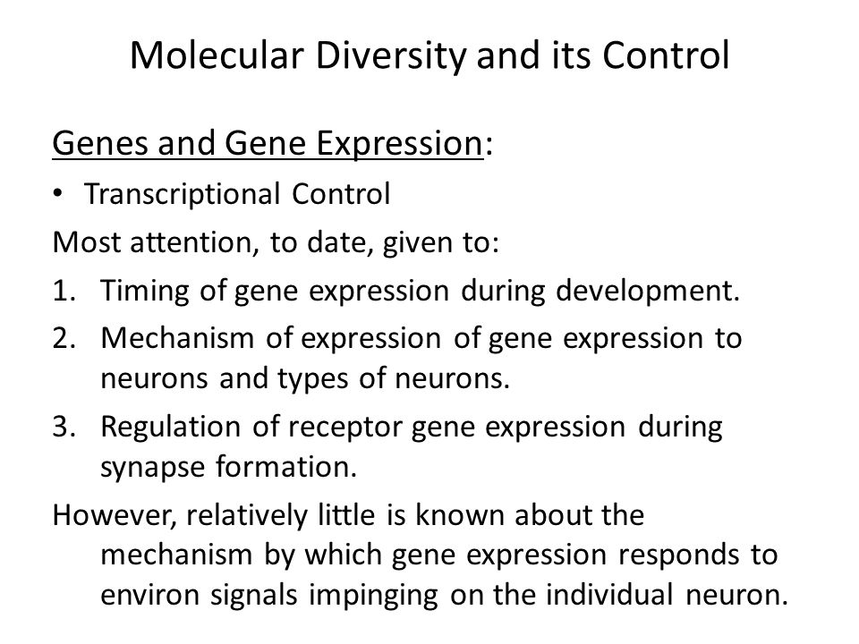 Molecular Diversity and its Control Genes and Gene Expression: Transcriptional Control Most attention, to date, given to: 1.Timing of gene expression during development.