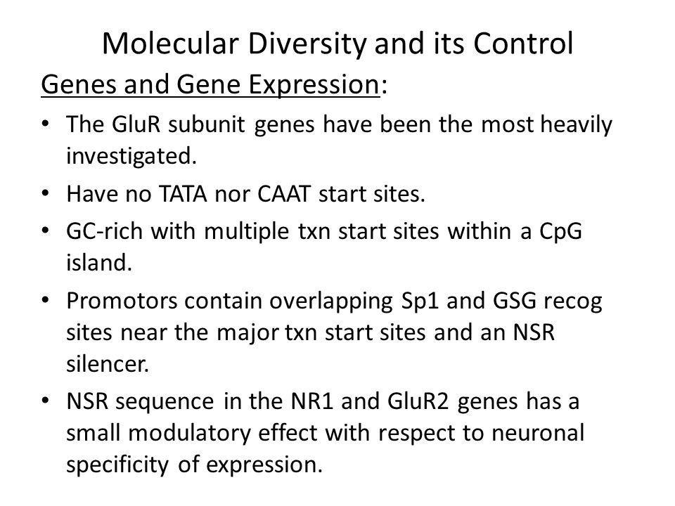 Molecular Diversity and its Control Genes and Gene Expression: The GluR subunit genes have been the most heavily investigated.