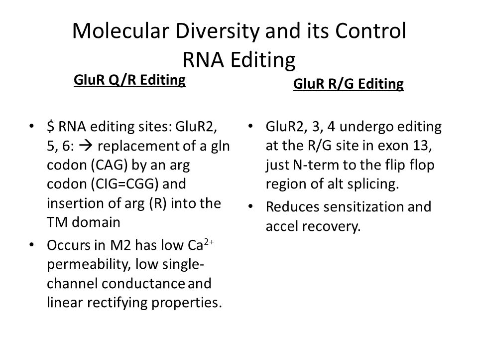 Molecular Diversity and its Control RNA Editing GluR Q/R Editing $ RNA editing sites: GluR2, 5, 6:  replacement of a gln codon (CAG) by an arg codon (CIG=CGG) and insertion of arg (R) into the TM domain Occurs in M2 has low Ca 2+ permeability, low single- channel conductance and linear rectifying properties.