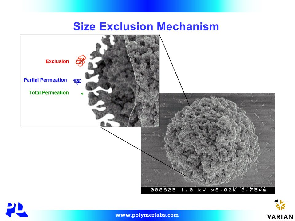 GPC Separation Mechanism  Polymer is prepared as a dilute solution in the eluent and injected into the system  The GPC column is packed with porous beads of controlled porosity and particle size  Large molecules are not able to permeate all of the pores and have a shorter residence time in the column  Small molecules permeate deep into the porous matrix and have a long residence time in the column  Polymer molecules are separated according to molecular size, eluting largest first, smallest last