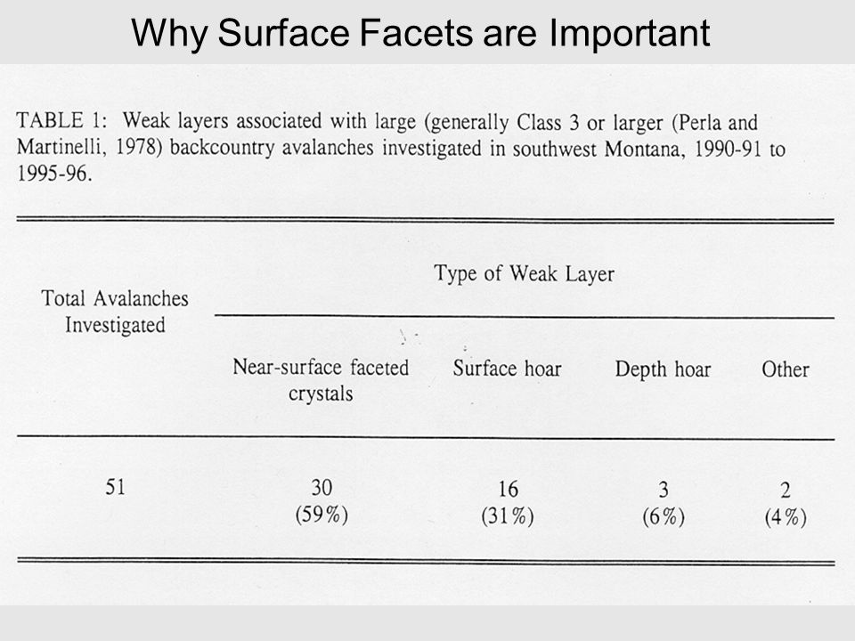Why Surface Facets are Important