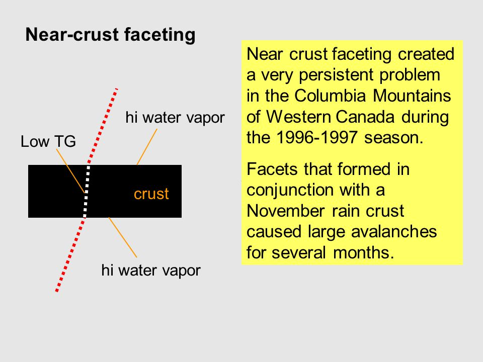 Near crust faceting created a very persistent problem in the Columbia Mountains of Western Canada during the 1996-1997 season. Facets that formed in c