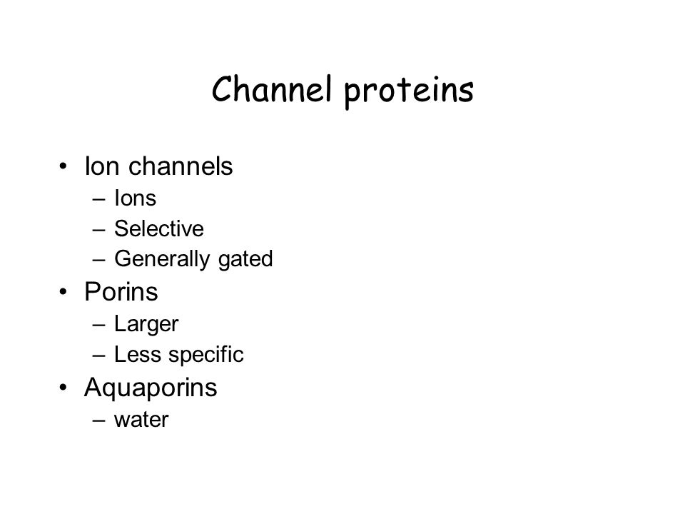 Channel proteins Ion channels –Ions –Selective –Generally gated Porins –Larger –Less specific Aquaporins –water