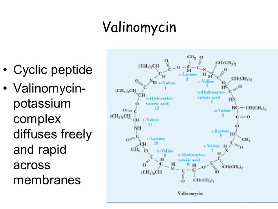 Valinomycin Cyclic peptide Valinomycin- potassium complex diffuses freely and rapid across membranes