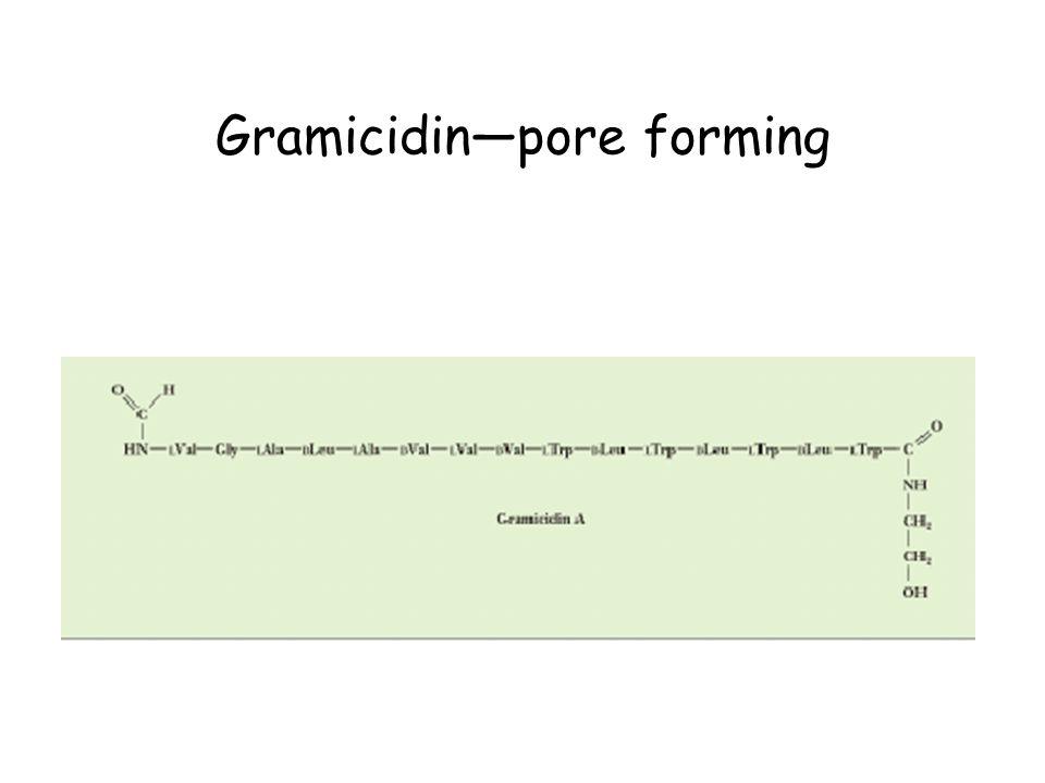 Gramicidin—pore forming