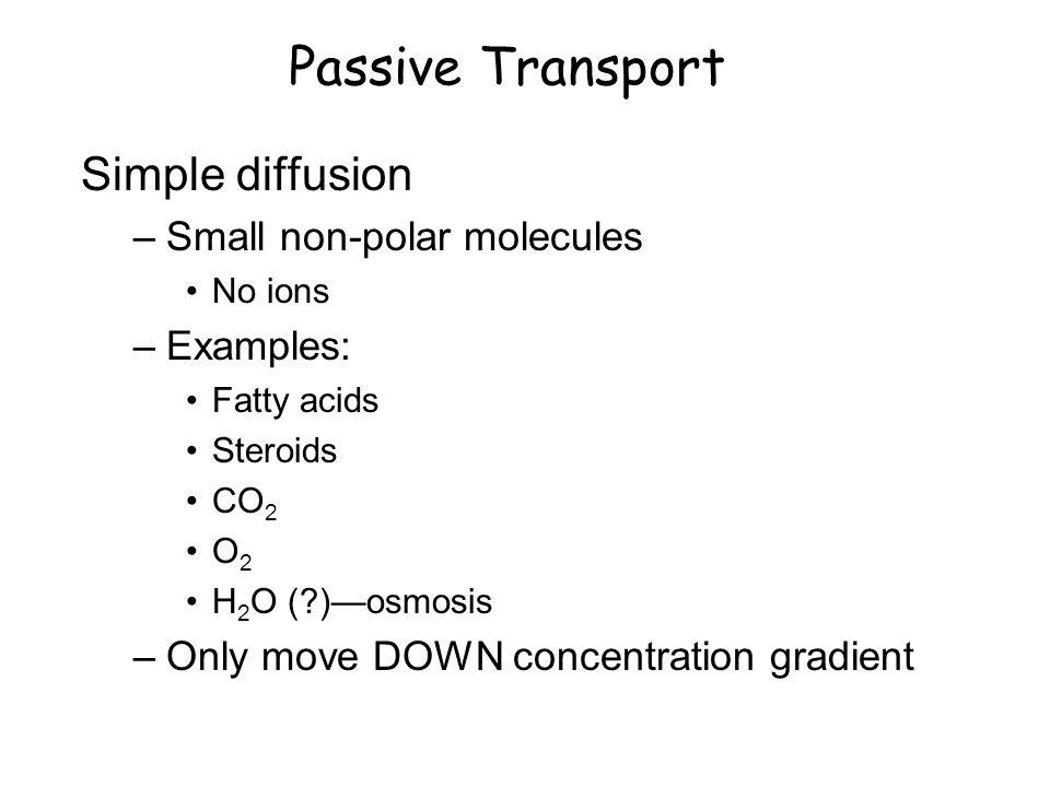 Passive Transport Simple diffusion –Small non-polar molecules No ions –Examples: Fatty acids Steroids CO 2 O 2 H 2 O ( )—osmosis –Only move DOWN concentration gradient