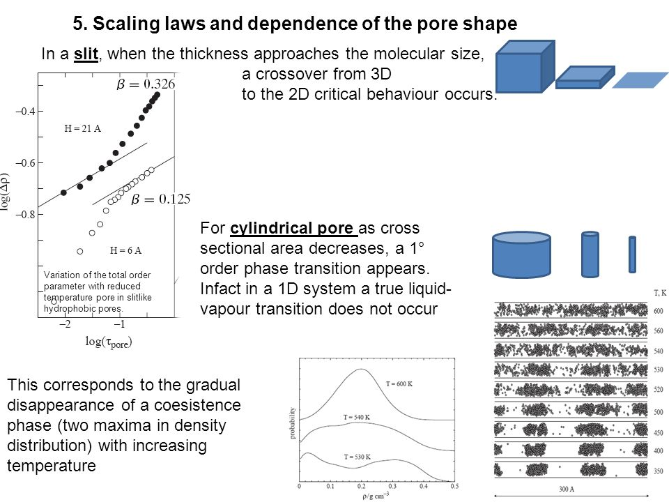 13 5. Scaling laws and dependence of the pore shape Variation of the total order parameter with reduced temperature pore in slitlike hydrophobic pores