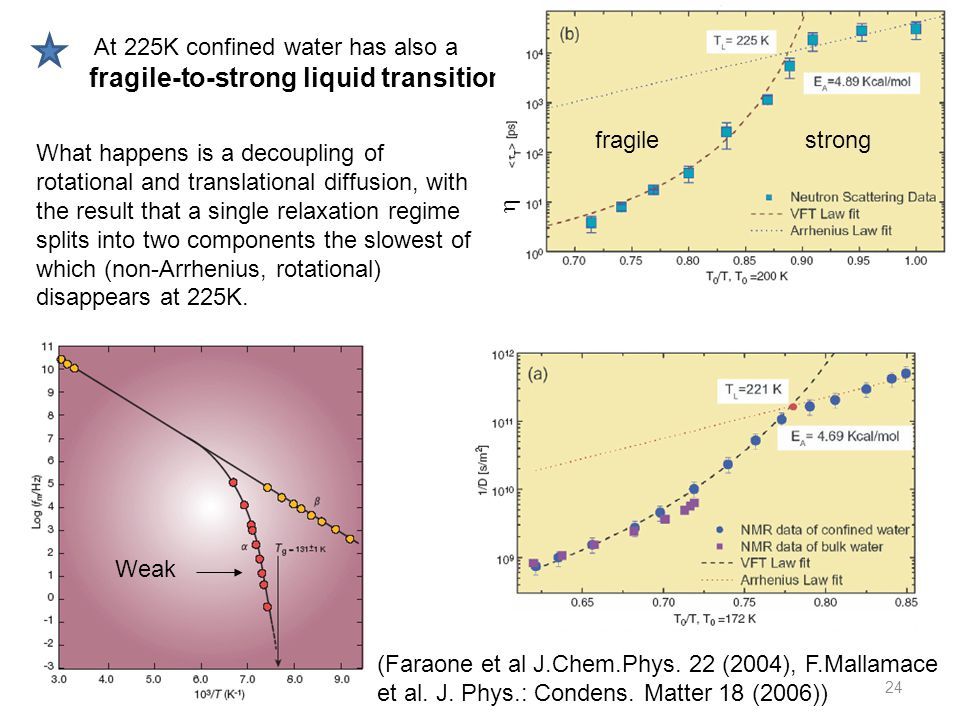 24 At 225K confined water has also a fragile-to-strong liquid transition  fragilestrong What happens is a decoupling of rotational and translational diffusion, with the result that a single relaxation regime splits into two components the slowest of which (non-Arrhenius, rotational) disappears at 225K.