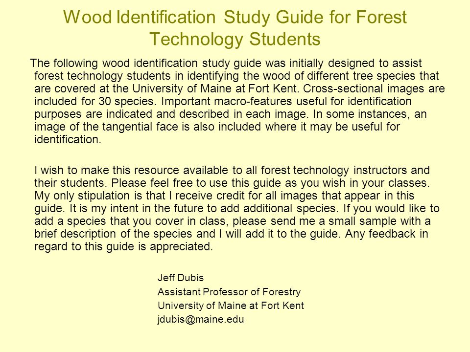 Wood Identification Study Guide for Forest Technology Students The following wood identification study guide was initially designed to assist forest t