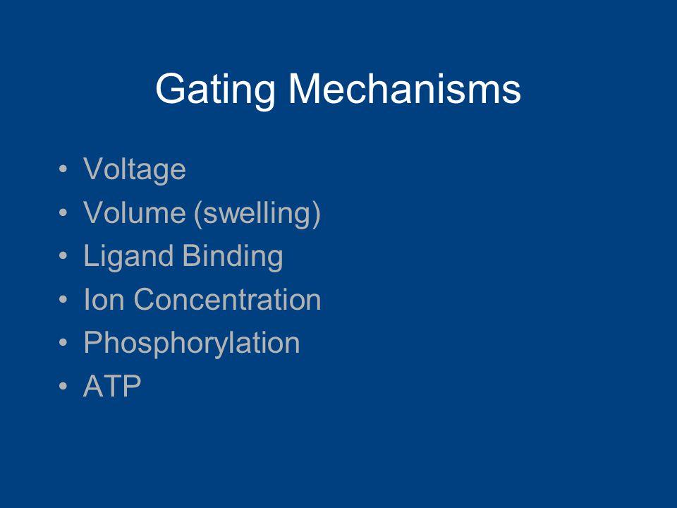 Gating Mechanisms Voltage Volume (swelling) Ligand Binding Ion Concentration Phosphorylation ATP